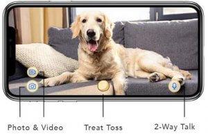 Furbo Hundekamera mit Leckerliausgabe_Foto_Video