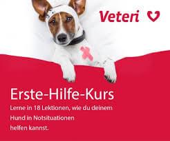 Veteri_Erste_Hilfe_Kurs_Hunde_Logo